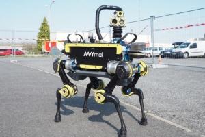 Собаки-роботы доставят посылки